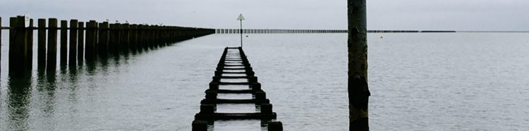 cropped-peer-to-pier-6.jpg